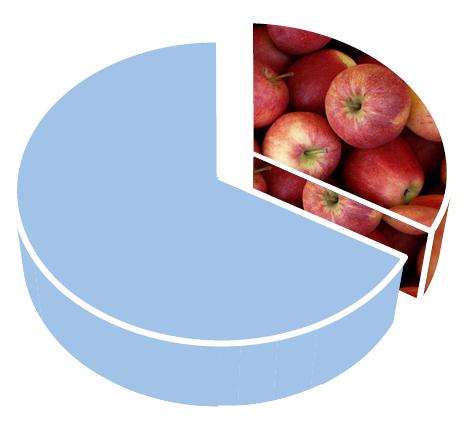 Var tredje tugga vi äter är beroende av pollinering.