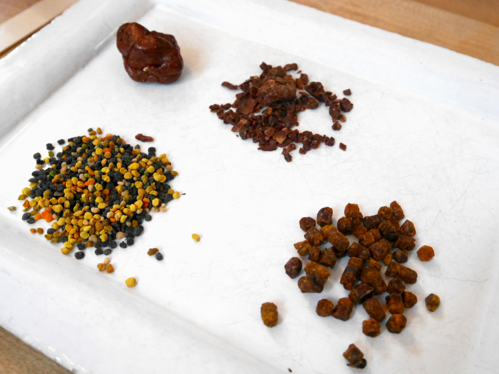 propolis bibrod pollen