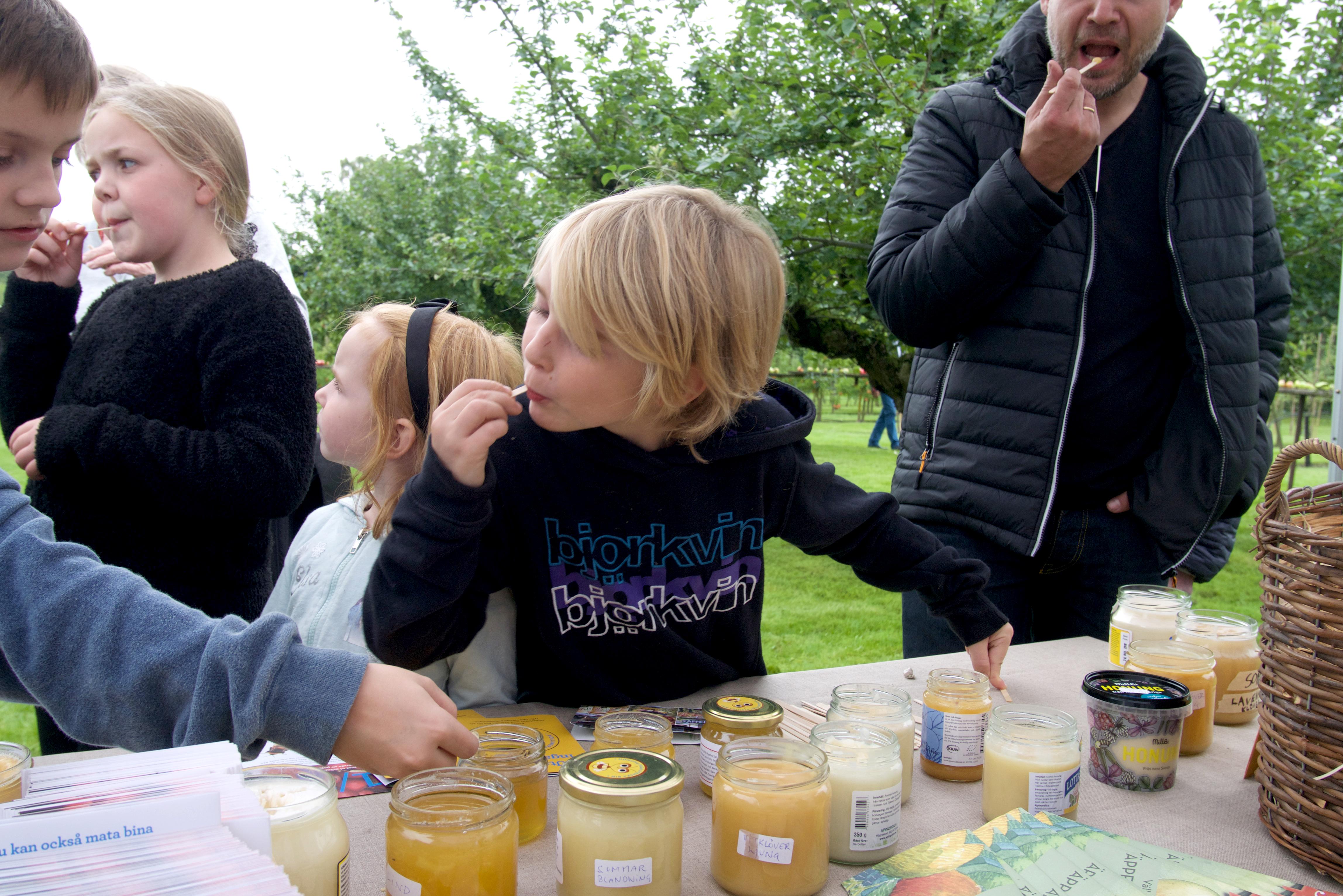 Honungsbar i Kivik